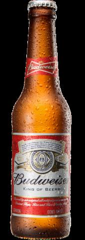 Botella retornable de 330 centímetros cúbicos de Budweiser